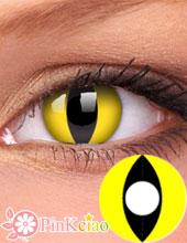 Cosplay 猫眼(黄底)