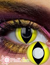 猫眼(黄底)