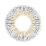 NEO Vision Silicos Monthly Glitter Grey 闪烁灰 (硅水凝胶/月拋/2片装)