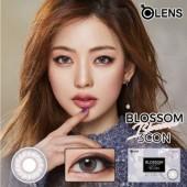 O-Lens Blossom Gray 1 month (月拋/2片装/需预订3-4天)